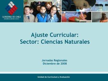 Presentación Ajuste Ciencias 100309 - LEM