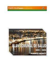 PLAN DE SALUD 2013.pdf - Transparencia Municipal