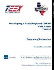 Developing a State/Regional CBRNE Task Force - Texas ...
