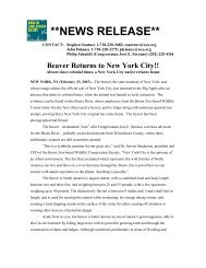 Beaver Returns to New York City - Bronx River Alliance