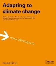 Download PDF (407KB) - Irish Aid