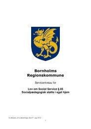 Lov om Social Service § 85 Socialpædagogisk støtte i eget hjem