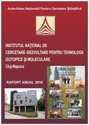 Raport anual de activitate pentru anul 2010 - ITIM