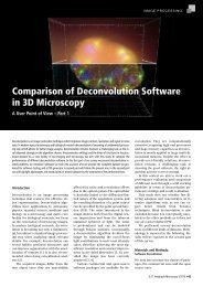 Comparison of Deconvolution Software in 3D Microscopy