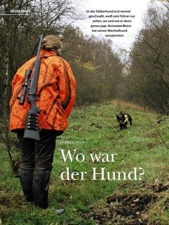 Wo war der Hund? - beim Verein für Deutsche Wachtelhunde