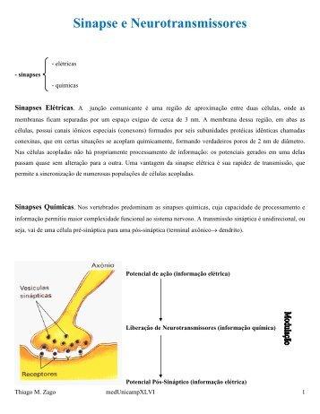 Sinapse e Neurotransmissores