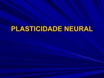Disciplina Fisioterapia Neurológica - Luzimar Teixeira