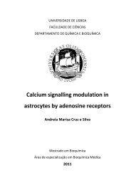 Calcium signalling modulation in astrocytes by adenosine receptors