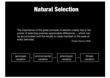 Natural Selection - Evolutionary Biology