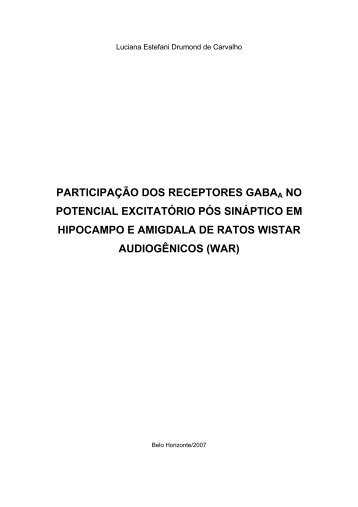 participação dos receptores gabaa no potencial excitatório pós ...