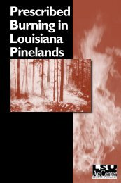 Prescribed Burning in Louisiana Pinelands - The LSU AgCenter
