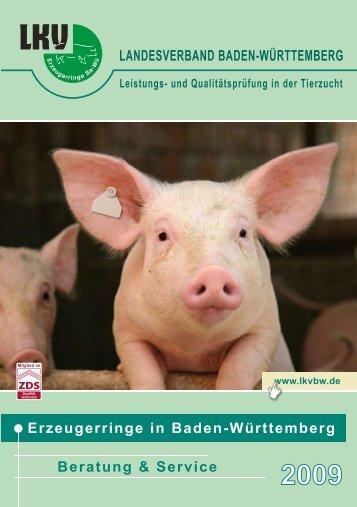 Rescue Deck - Landesverband Baden-Württemberg für ...