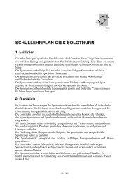 SCHULLEHRPLAN GIBS SOLOTHURN 1. Leitlinien