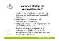 Växtskyddsdirektiv och växtskyddsstrategi - läget - nordicbeet.nu