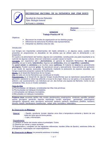 TPNº 12 Hongos - Inicio - Universidad Nacional de la Patagonia ...