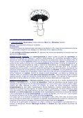 TPNº 12 Hongos - Inicio - Universidad Nacional de la Patagonia ... - Page 3