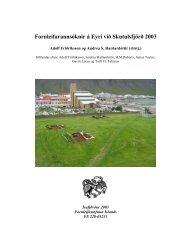 Fornleifarannsóknir á Eyri við Skutulsfjörð 2003 - Nabo