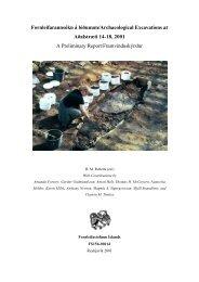 Fornleifarannsókn á lóðunum/Archaeological Excavations at ... - Nabo