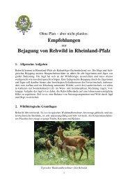 Empfehlungen - Landesjagdverband Rheinland-Pfalz