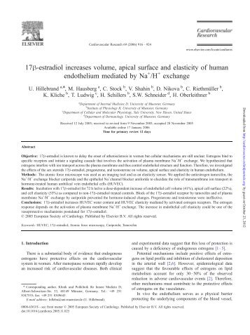 17h-estradiol increases volume, apical surface and elasticity of human
