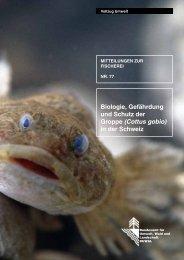 (Cottus gobio) in der Schweiz - Bundesamt für Umwelt