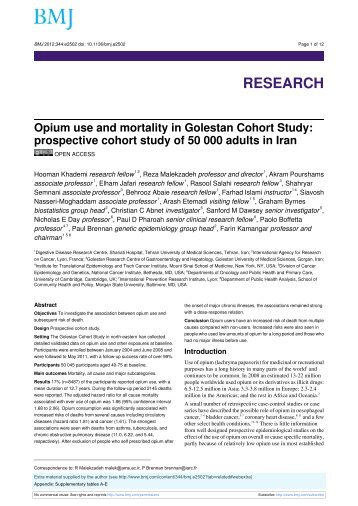 To see the full-text of this paper in pdf click here.