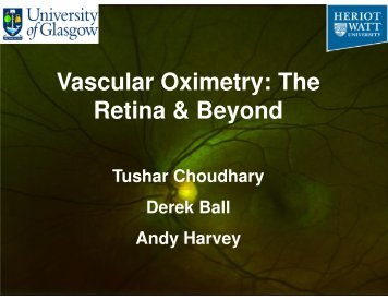 Vascular Oximetry: The Retina & Beyond - SUPA