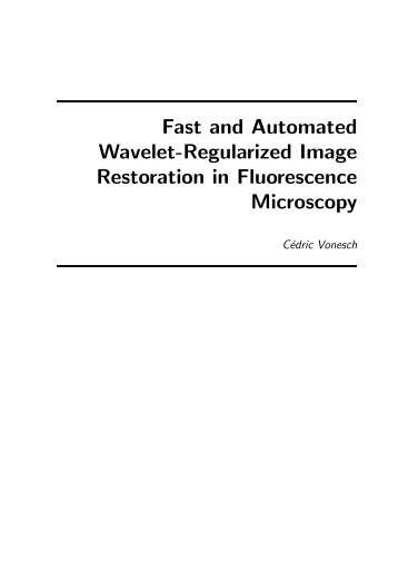 Fast and Automated Wavelet-Regularized Image Restoration in ...