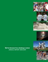 ANNUAL REPORT 2008-2009 - Bermuda Stock Exchange