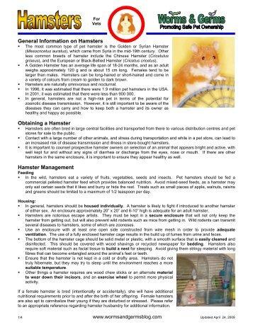 Rabid Horse Minnesota Worms Amp Germs Blog - 357×462