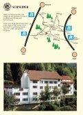 SCHNEIDER Schwarzwälder Kuckucksuhren - Cuckoo Horst - Seite 2