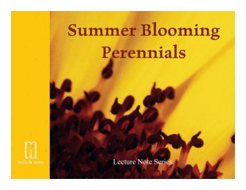 Summer Blooming Perennials - Melinda Myers