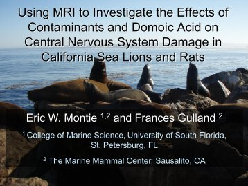 Using MRI to Investigate the Interaction of Contaminants and ...