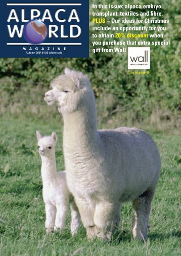 Autumn - Classical MileEnd Alpacas