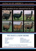 Autumn - Classical MileEnd Alpacas - Page 2