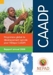 1 - CAADP