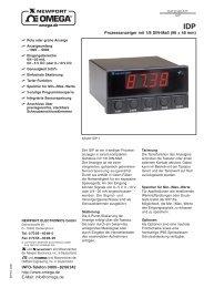 IDP Prozessanzeiger mit 1/8 DIN-Maß (96 × 48 mm)