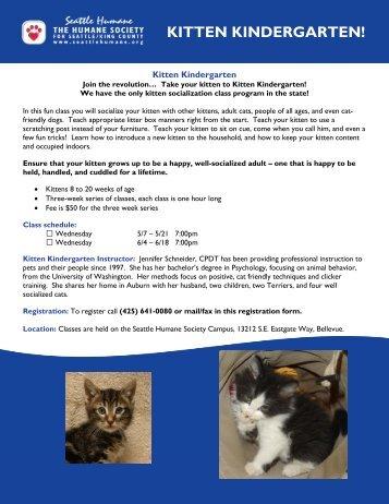 KITTEN KINDERGARTEN! - Seattle Humane Society