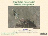 Wildlife Management - Environmental Sciences Division - Oak ...
