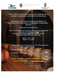 Taller sobre La Ciencia de Viñas y Vinos: Ejemplo de un ... - Cicese