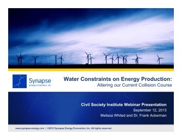 See the statement by Synapse Energy Economics. - Civil Society ...
