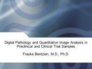 Image Analysis - Digital Pathology Association
