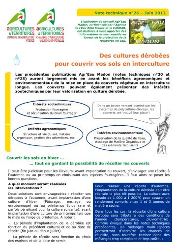 Engrais vert ou culture d rob e chambre d 39 agriculture - Chambre d agriculture charente ...