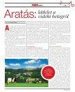 Őrség: a nyugat keletje - Hitelgarancia Zrt. - Page 7