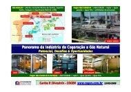 Cogeração a Gás Natural - Cogen