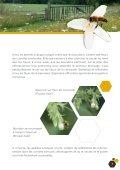 Fleurs sauvages et prairies fleuries pour nos pollinisateurs, guide ... - Page 7