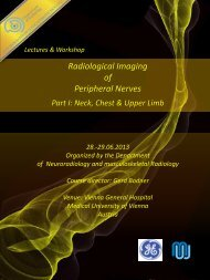Radiological Imaging of Peripheral Nerves