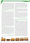 European Voluntary Service: - Euroopa Noored - Page 6