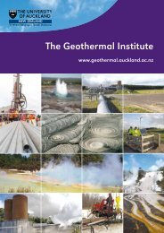 The Geothermal Institute - UniServices