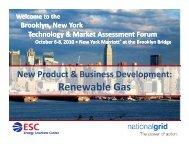 Renewable Gas - tech-4-you.com